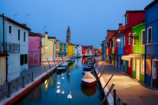 Colorful Houses of Burano with Swans, Venice, Italy.