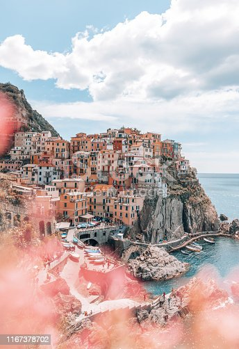 Landscape of beautiful and popular touristic Ligurian villages with pink flowers and colourful buildings in Cinque Terre village, Manarola, Italy