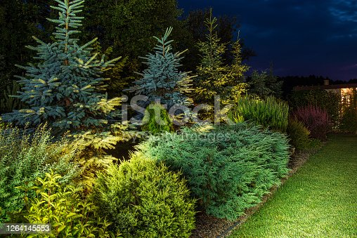 Colorful Illuminated Backyard Garden and the Small Lawn. Gardening and Landscaping Theme.
