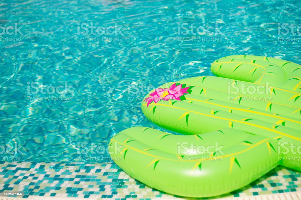 Colorful Inflated Cactus Floating In A Refreshing Blue Swimming Pool Stock  Photo & More Pictures of Albania