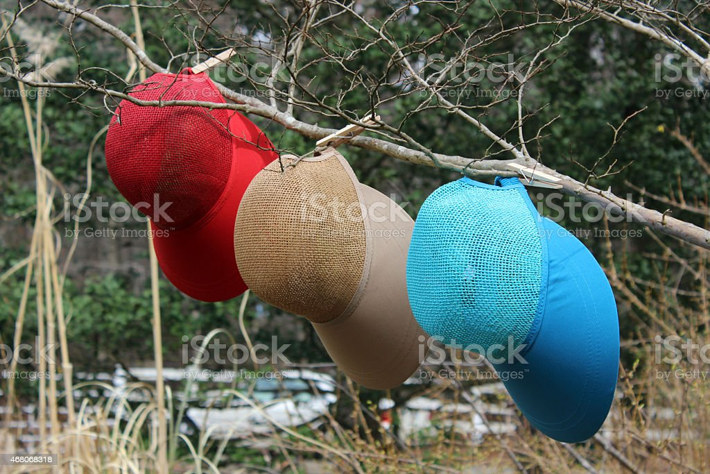 3 Colorful Ladies Hats Hanging on Tree Branch stock photo