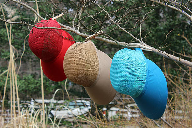 3 colorful ladies hats hanging on tree branch - pam schodt stock photos and pictures