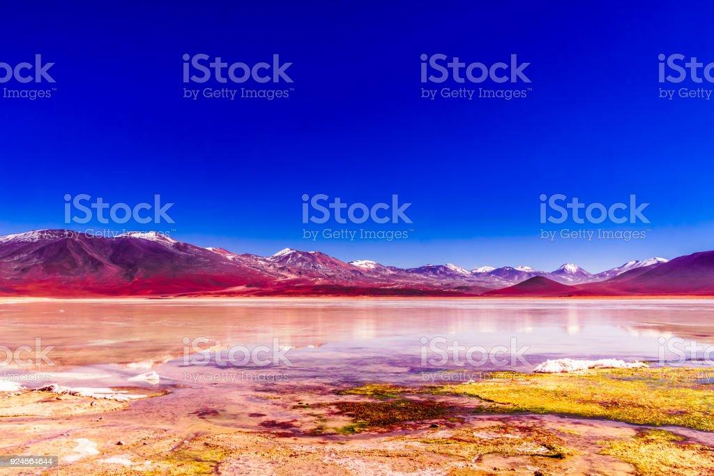 Colorful laguna Blanca in the Altiplano of Bolivia stock photo