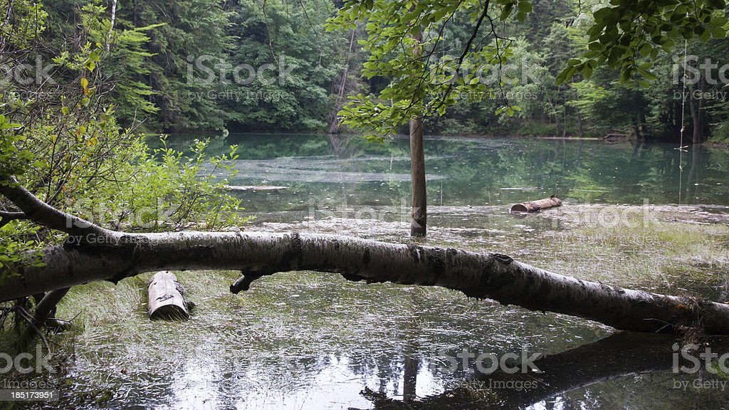 Colorful Lakes in Poland stock photo