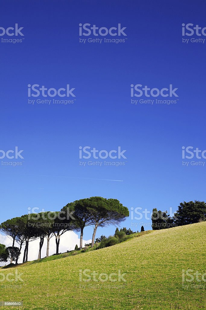 Bunte Landschaft Lizenzfreies stock-foto
