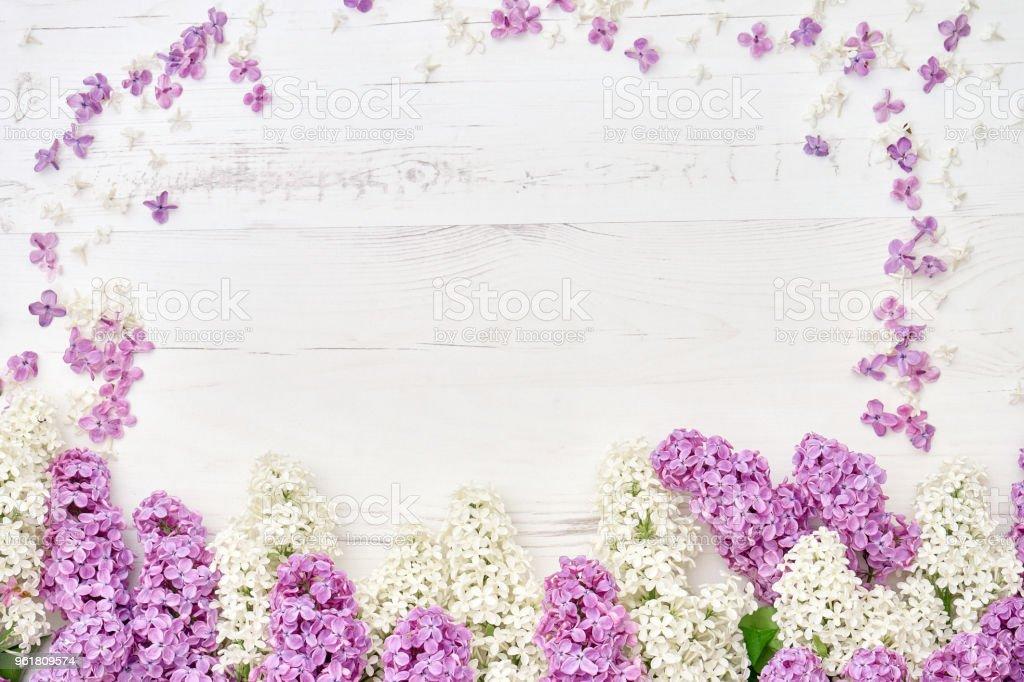 Flores Lilas Con Rosas Sobre Fondo: Foto De Borda Colorida Flores Lilás Sobre Fundo Branco De