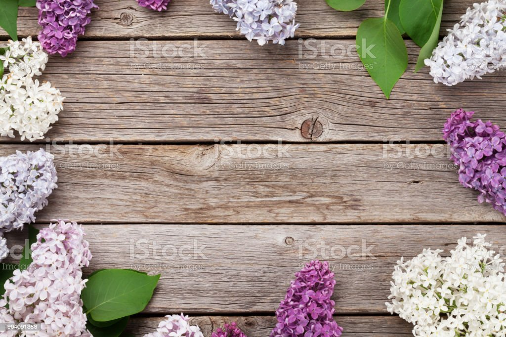 Colorful lilac flowers - Royalty-free Above Stock Photo