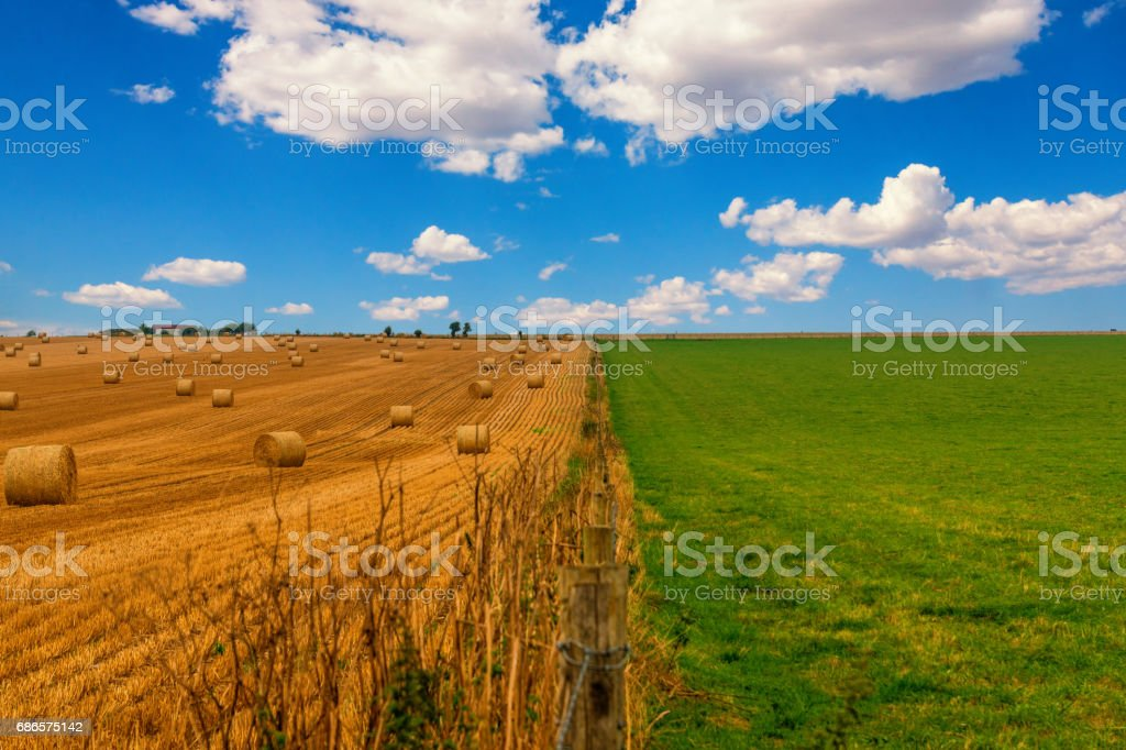 Colorful meadow and straw field with blue cloudy sky. Picture with green grass, yellow golden straw in thirds with the blue sky. royalty-free stock photo