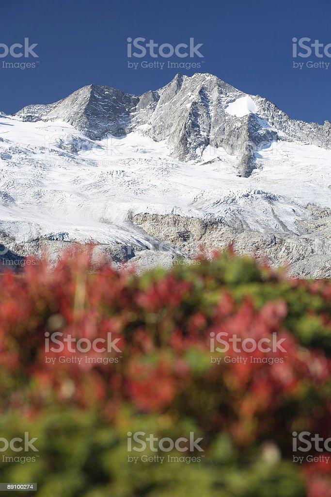 Colorido paisaje de montaña foto de stock libre de derechos