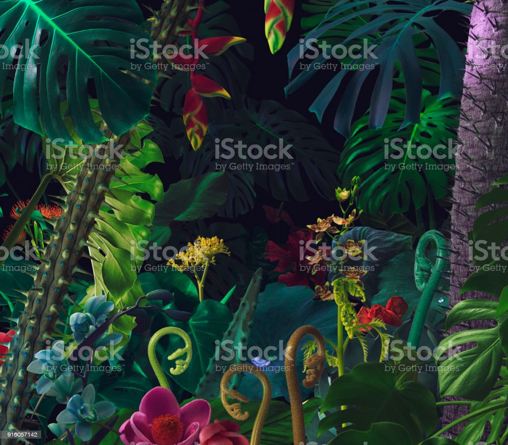 Colorful night jungle background stock photo