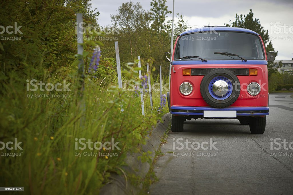 Colorful old van and plants. Iceland. Reykjavic. stock photo