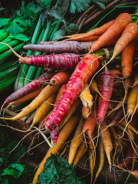 Colorful Organic Carrots at Oranjezicht Farmer's Market in Cape Town, South Africa stock photo