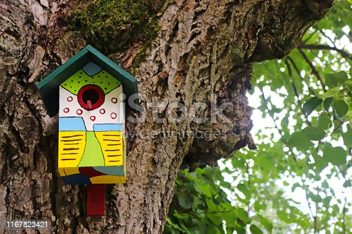 multi colored painted bird nest box hanging on the trunk of an old tree with green leaves