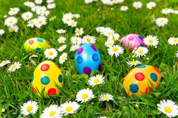 coloridos huevos de pascua pintados en pasto con margaritas - lunes de pascua fotografías e imágenes de stock