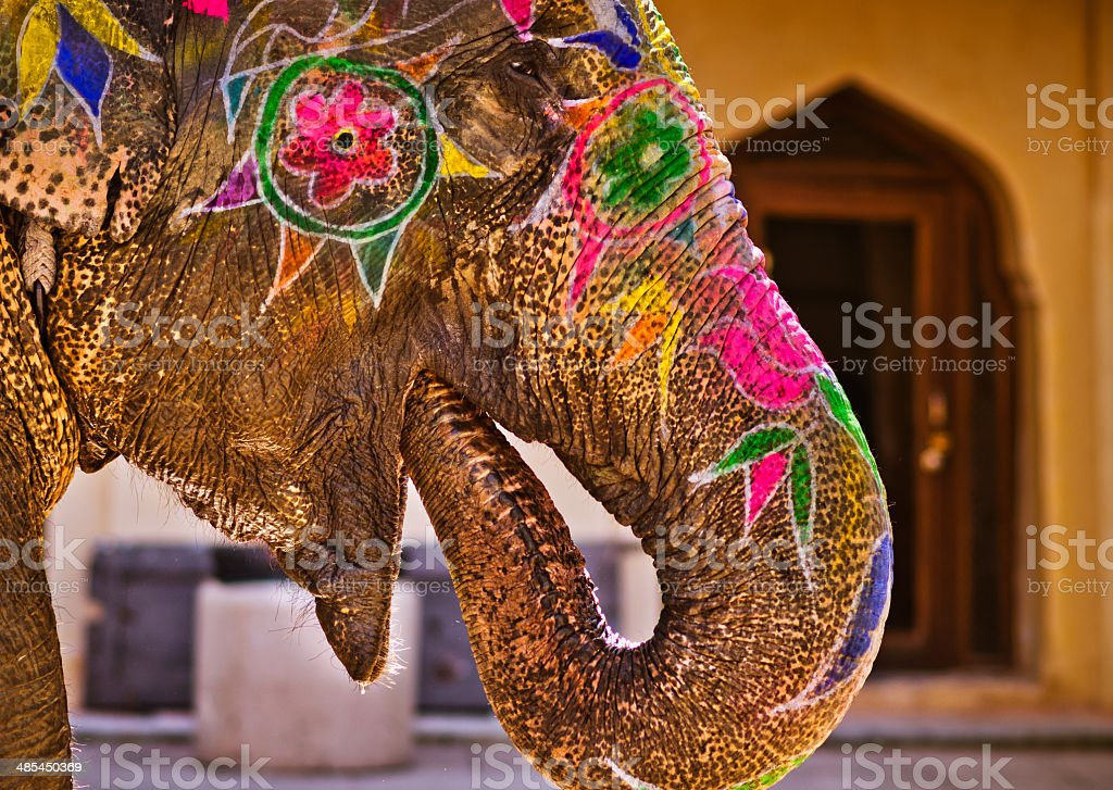 colorful painted Elephant drinking water stock photo