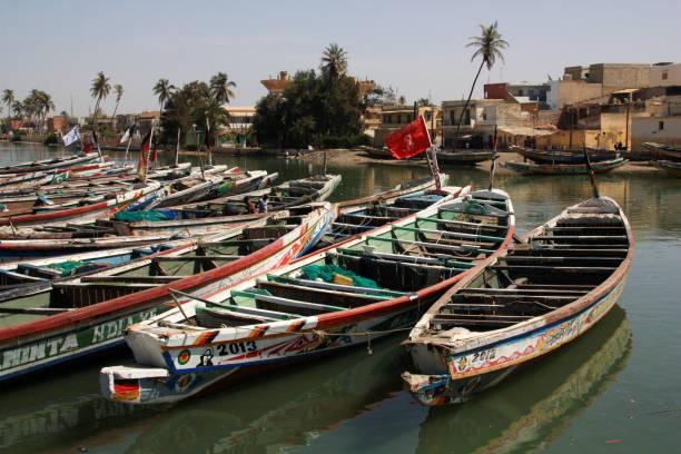 colorful painted pirogues moored in the fisherman's wharf of saint-louis-du-sénégal - st louis стоковые фото и изображения