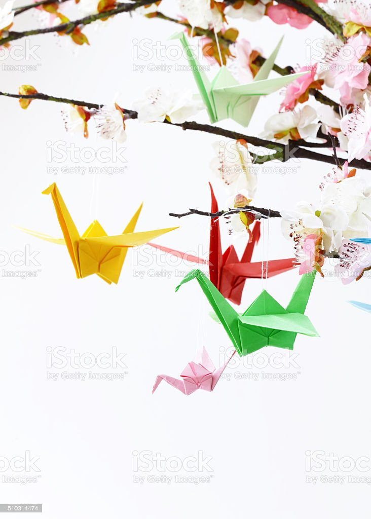 colorful paper origami birds on flowering branches of cherry (sakura) stock photo