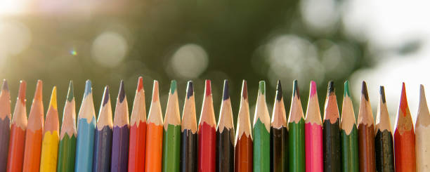 Colorful pencils in a row over natural green stock photo