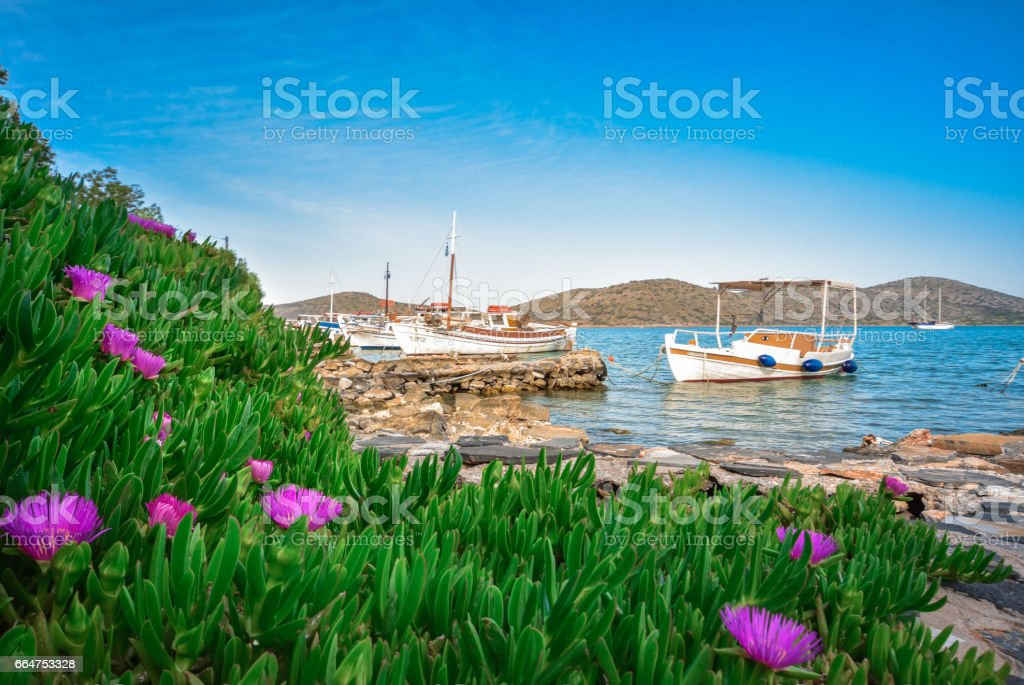 Colorful plants with wooden fishing boat and yachts anchored at the tropical waters of the famous gulf of Elounda, the village of celebrities, near Spinalonga, Crete, Greece. stock photo