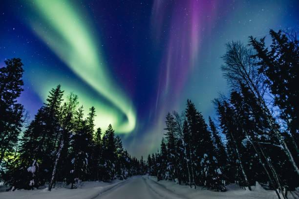 färgglada polar arktiska norrskenet aurora borealis aktivitet i snö vinterskogen i finland - northern lights bildbanksfoton och bilder