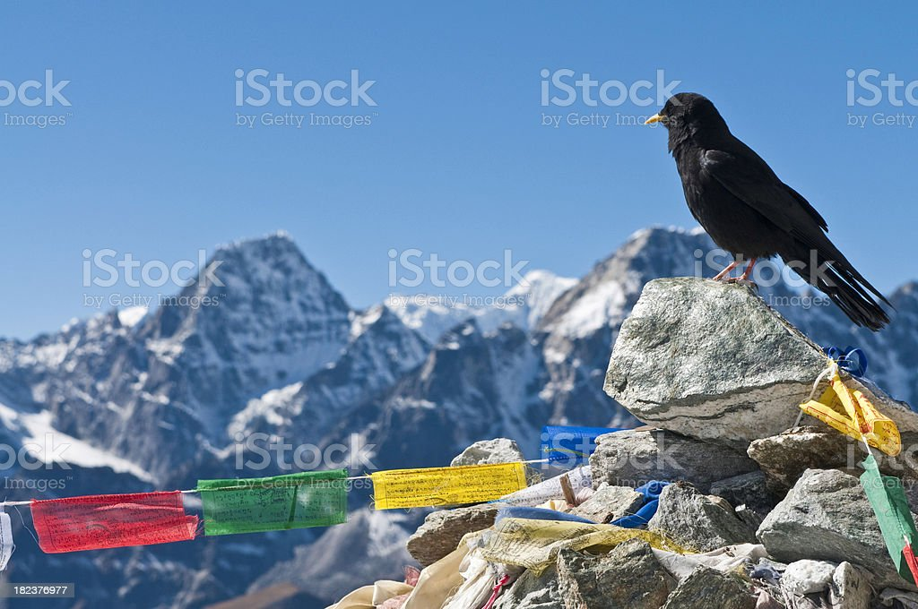 Colorful prayer flags cairn crow Mt Everest NP Himalayas Nepal royalty-free stock photo