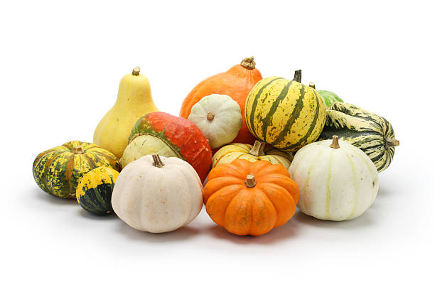 colorful pumpkin and squash collection - gourd stock photos and pictures