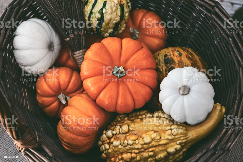 Colorful Pumpkins In A Straw Basket stock photo