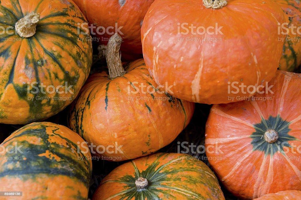 Красочные Pumpkins Стоковые фото Стоковая фотография