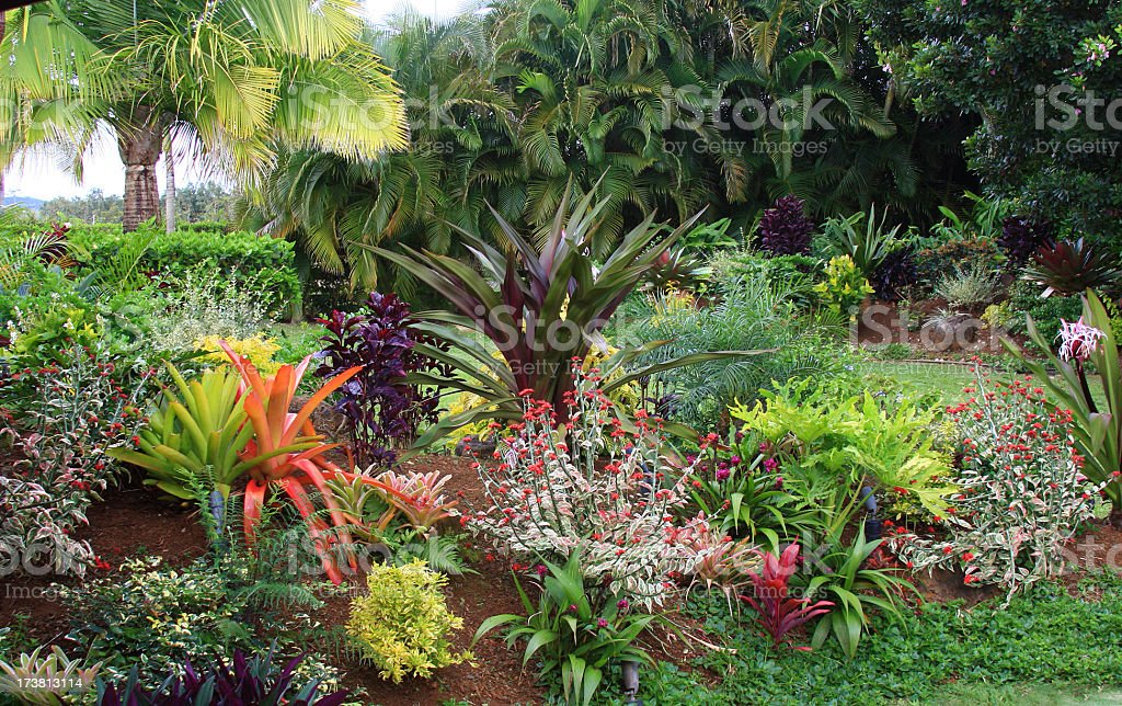 Colorful resort garden on  Hawaii stock photo