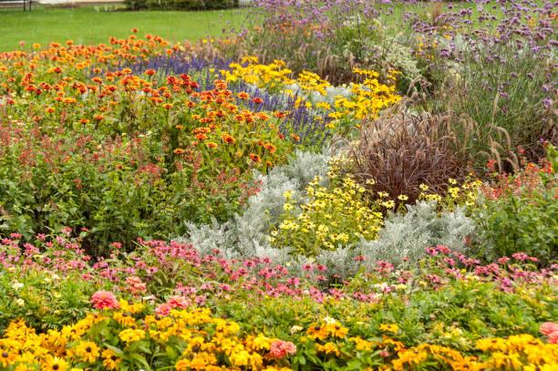 kleurrijke resort tuin - dixville notch stockfoto's en -beelden