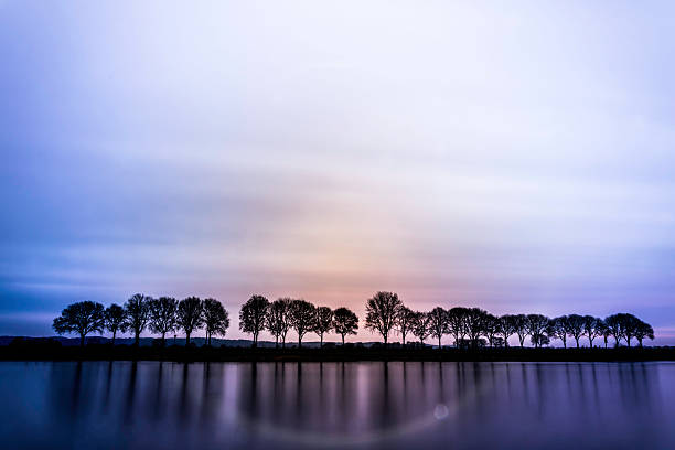 Colorful River Trees stock photo
