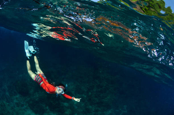 A colorful skin diving girl in the clear ocean. A colorful skin diving girl in the clear ocean. free diving stock pictures, royalty-free photos & images