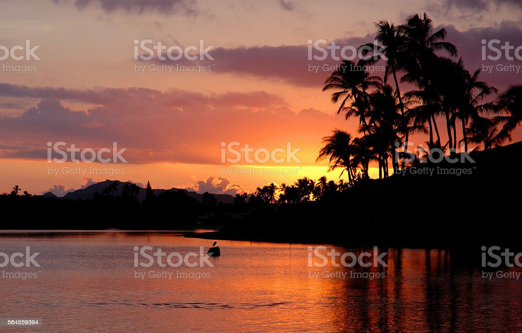 Colorful sky reflected on lagoon with palm trees stock photo