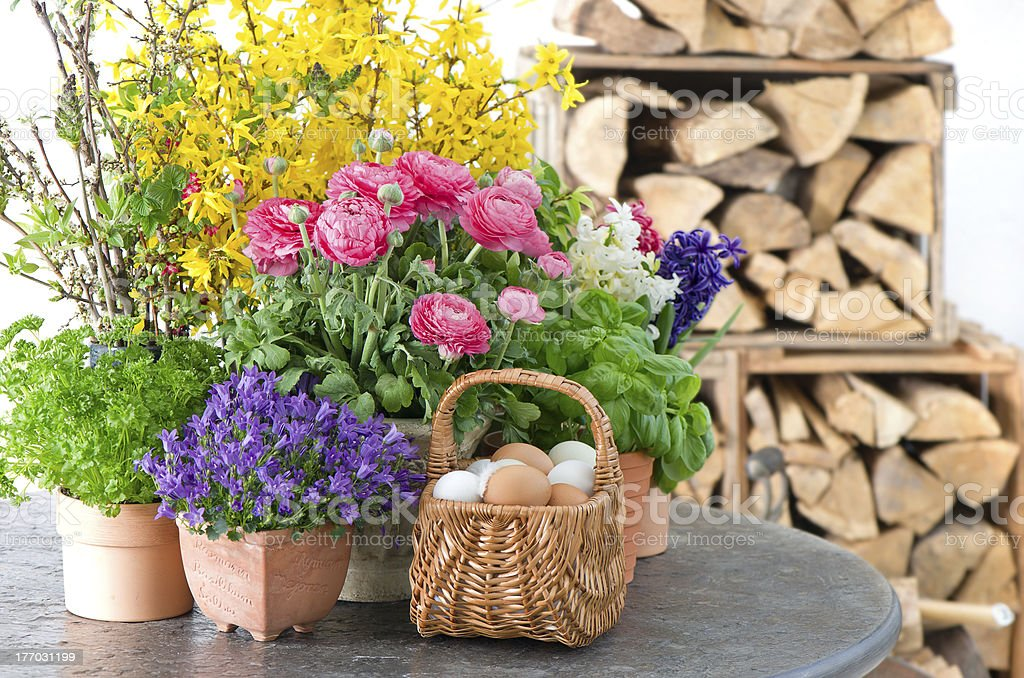colorful spring flowers and easter eggs decoration royalty-free stock photo