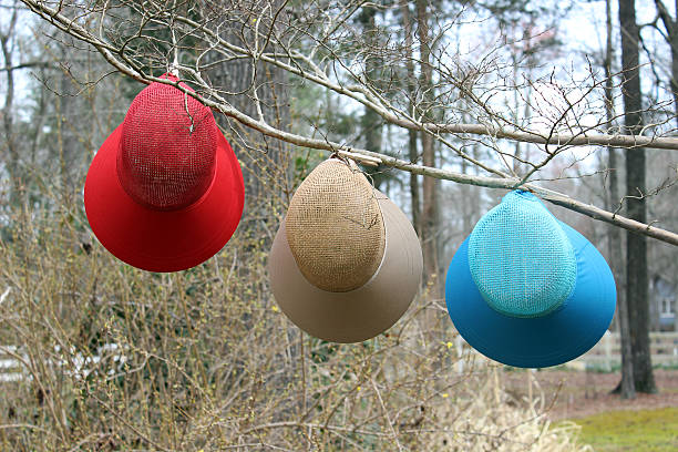 3 colorful spring hats hanging on tree branch - pam schodt stock photos and pictures