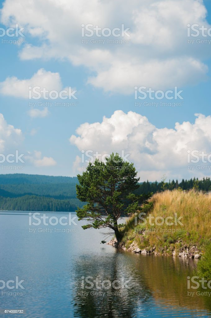 Colorful spring landscape royalty-free stock photo
