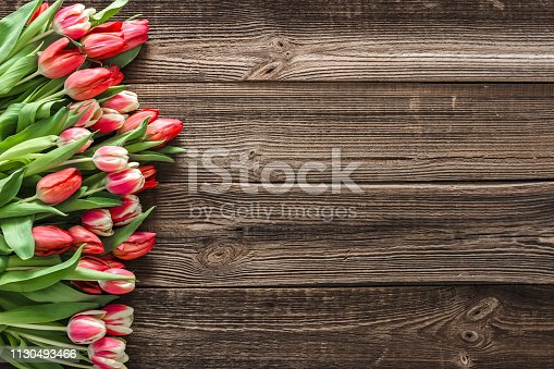 680461500istockphoto Colorful spring tulip. Mothers day flowers on wooden background. 1130493466