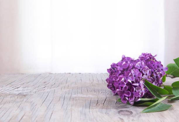 kleurrijke lente roze paars lila bush ion rustieke houten tafel met kopieerruimte - meerdere lagen effect stockfoto's en -beelden