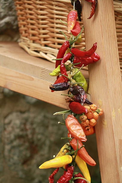 Colorful strung peppers – Foto