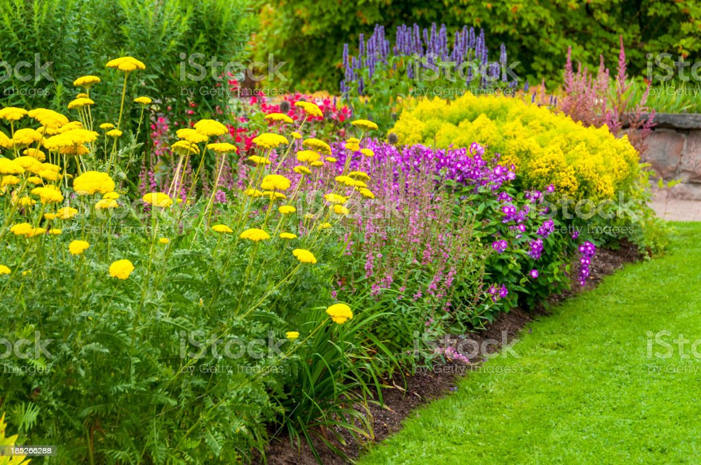 Colorful Summer Flowerbed royalty-free stock photo