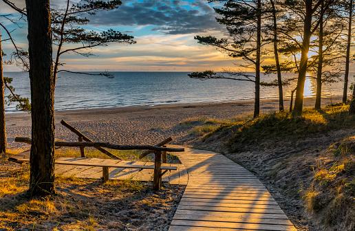 Colorful sunrise at the coastal dune and forest zone of Jurmala, Latvia, EC