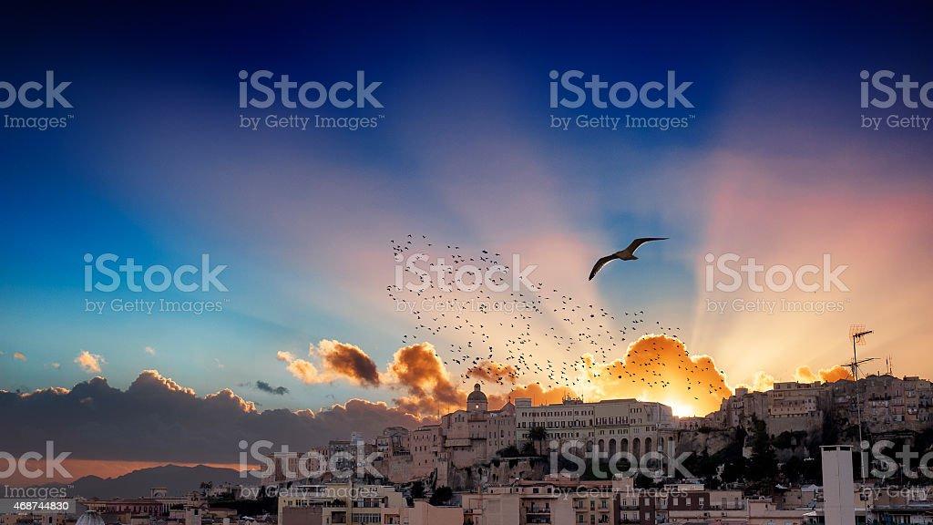 Colorido pôr do sol e uma gaivota - foto de acervo