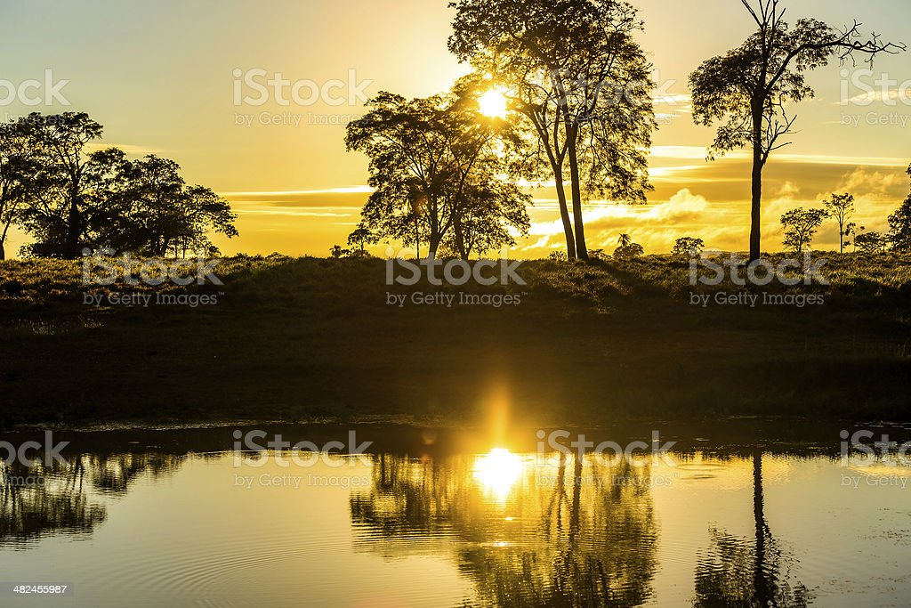 Colorful sunset in Pantanal, Brazil stock photo