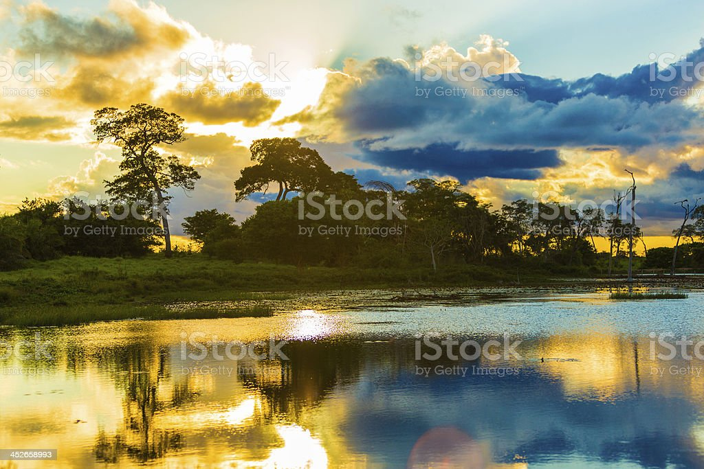 Colorful Sunset in Pantanal River, Brazil stock photo