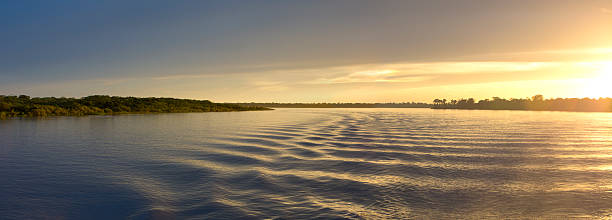 Colorful sunset on the river Amazon in the rainforest, Brazil Wonderful panoramic yellow sunset on the large river Amazon. Amazonas State, Brazil amazon river stock pictures, royalty-free photos & images