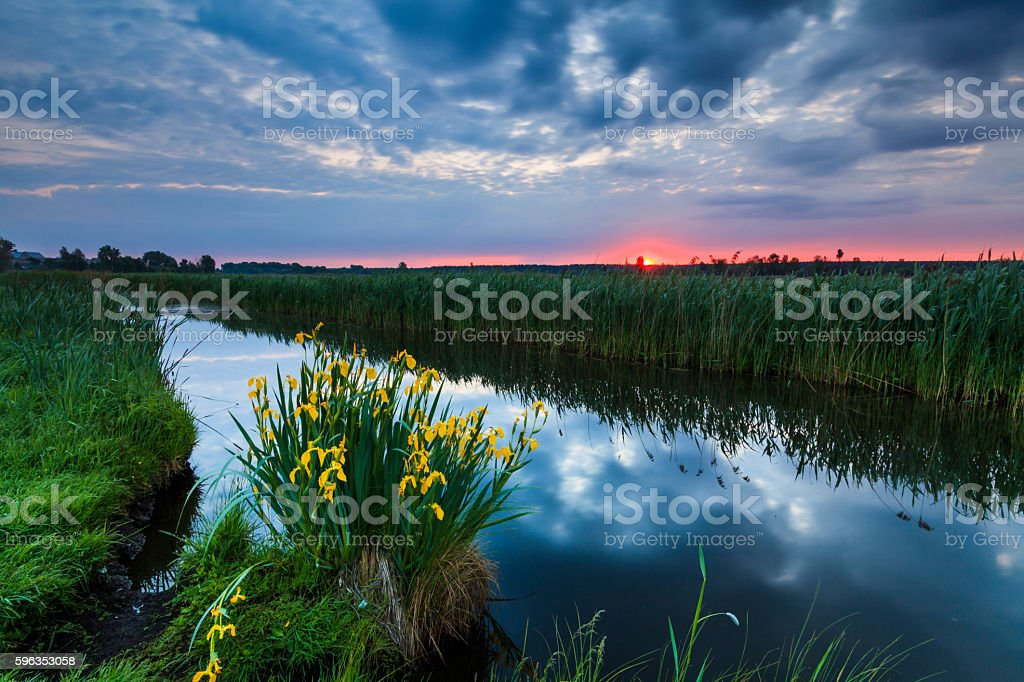 Colorful sunset over the small river. royalty-free stock photo