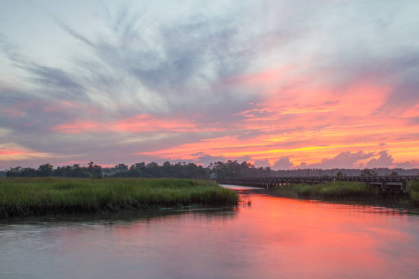 colorful sunset sky over savannah river - mokradło zdjęcia i obrazy z banku zdjęć