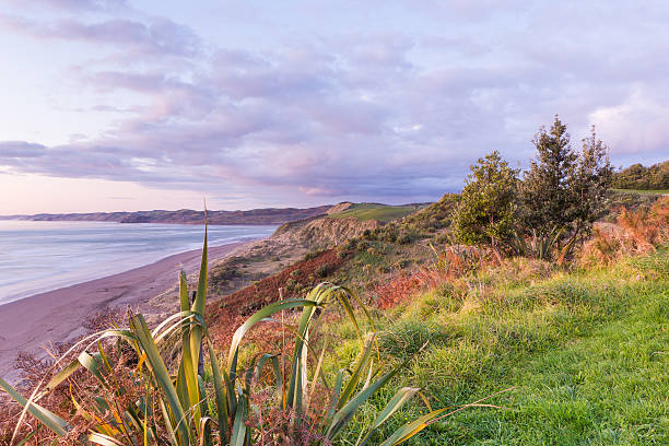 Colorful sunset view from the hill over a seaside stock photo