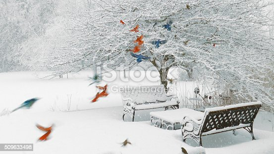 Colorful Survival; Cardinals, bluejays, sparrows, junco, woodpecker in a blizzard. Birds of different feathers flock together!