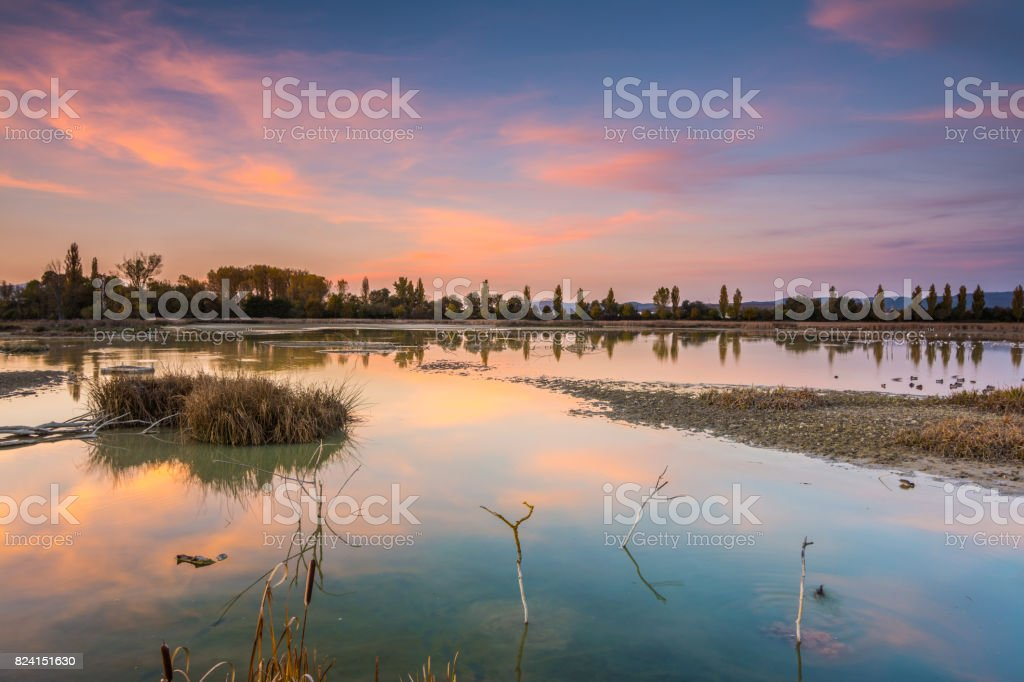 colorful swamp at sundown stock photo